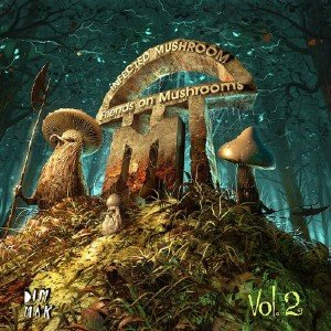Infected Mushroom - Friends On Mushrooms Vol.2 (2013)
