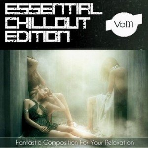 Essential ChillOut Edition Vol.11 (2013)