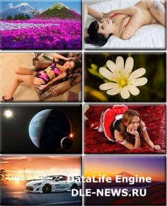 LIFEstyle News MiXture Images. Wallpapers Part (981)